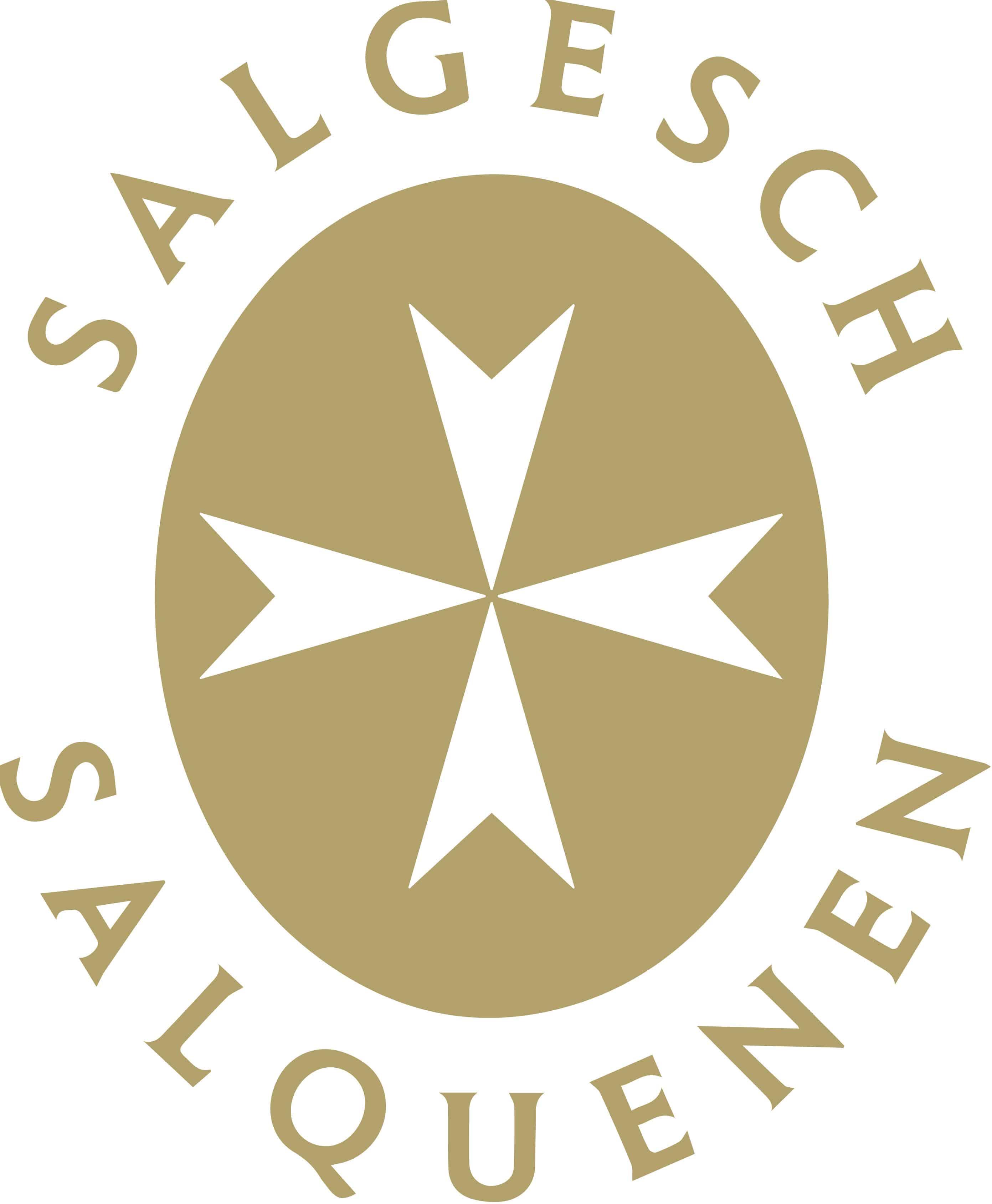 LogoSalgesch_GOLD